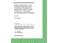 September 18th, 2009: 'Intellectual Property: Crosslicensing,Patent Pools and Cooperative Standards as a Channel for Climate Change', Ilian Iliev and Dr.Karsten Nehoff, Climate Strategies, Cambridge